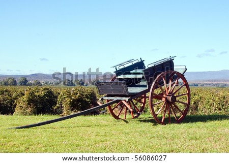 Horse cart in the winelands on a sunny day and blue sky