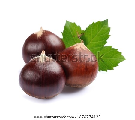 Horse chestnuts with leaves isolated on white backgrounds. Foto stock ©