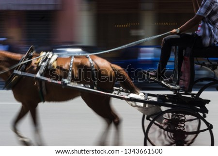 Horse drawn cairrage with motion blur. #1343661500