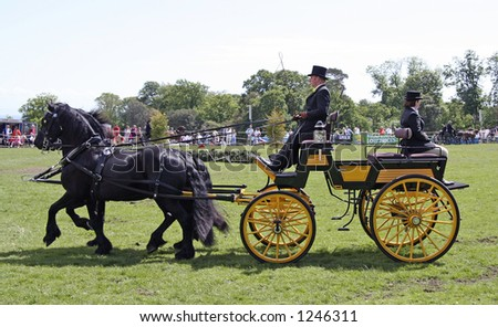 Horse Drawn Carriage show -cones UK Championship