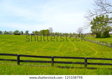 Horse Farm in Kentucky's Horse Country