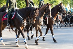 Horse Guards Parade In Thailand