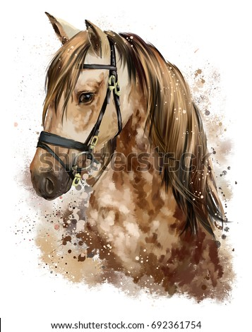 Horse head watercolor drawing