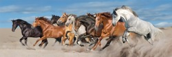 Horse herd run gallop in desert sandy dust against blue sky