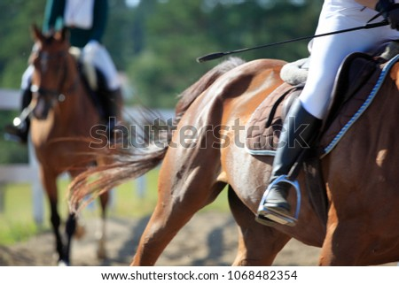 Horse in motion, jockey on horseback. Details of equipment for riding: saddle, whip, foot in stapes. Galloping horses. Riders on the competition racing down the track. Blurred background, not in focus