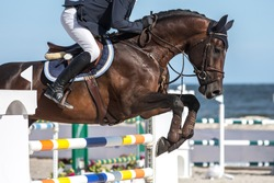 Horse Jumping, Equestrian Events, Show Jumping Competition.