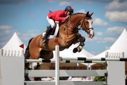 Horse Jumping, Equestrian Sports, Show Jumping Competition  themed photo