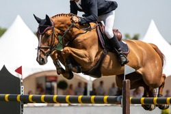 Horse Jumping, Equestrian Sports themed photo.