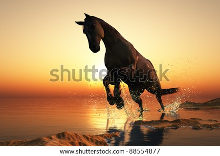 Horse on a background of blue sky.