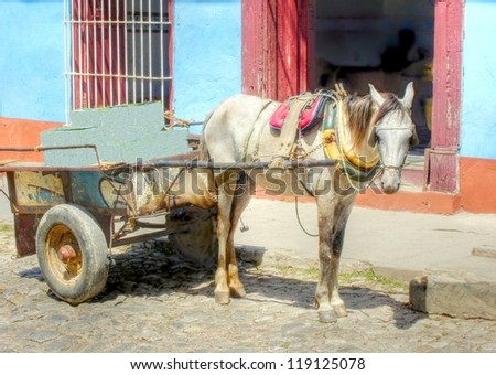 horse pulling a old wagon in the streets of Trinidad , Cuba