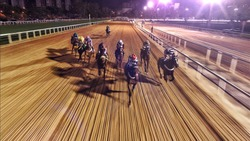Horse race at night