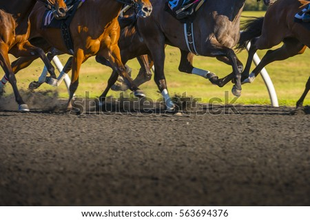 Horse Race colorful bright sunlit slow shutter speed motion effect fast moving thoroughbreds #563694376