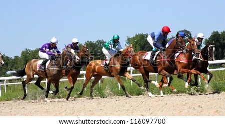 Horse race for the prize Summer,Russia.