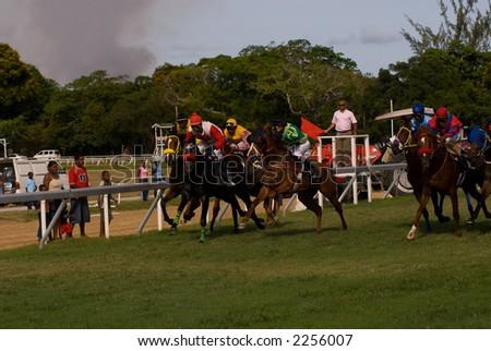 Horse races in Barbados.