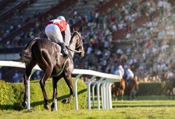 Horse races, jockey and his horse goes towards finish line. Traditional European sport.