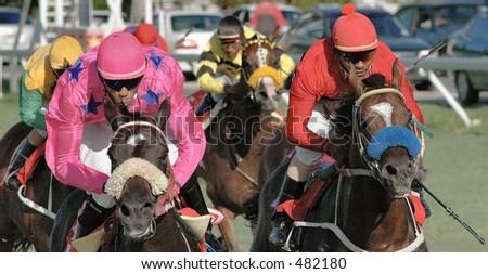 Horse- racing