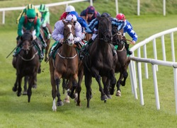horse racing action, Race horses and jockeys battling for first position on the race track