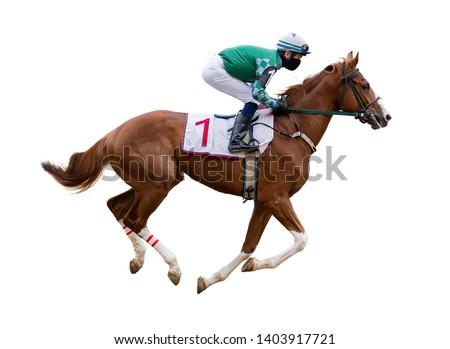 horse racing jockey isolated on white background Foto stock ©