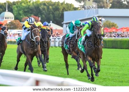 horse racing on turf #1122226532