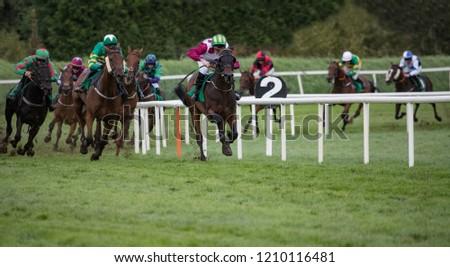 Horse racing panorama #1210116481