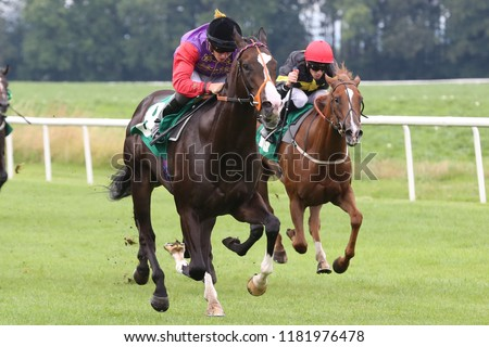 HORSE RACING - Topical ridden by Tom Marquand and Owned and Bred by HM The Queen wins the 2yo Novice Stakes at Thirsk Races : Thirsk Racecourse, Nth Yorkshire, UK : 20 August 2018  #1181976478