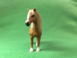Horse realistic toy on green background standing in front.