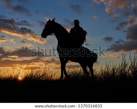 horse rider silhouette at sunset in field in summer #1370316833