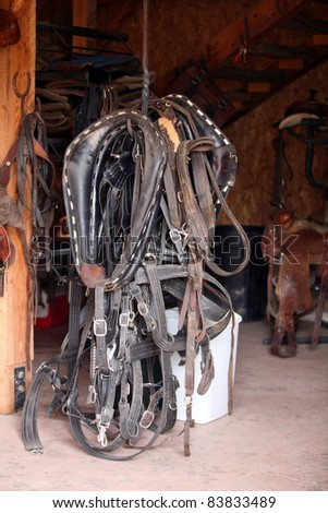 horse riding accessories and supplies