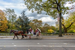 Horse riding in Central park New York City, Horse carriages in Central Park
