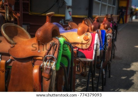 Horse saddles in a row