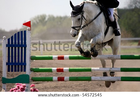 horse show jumping in special arena - stock photo