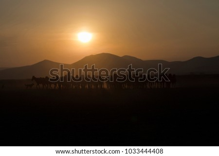 Horse silhouette on a background of dawn - Shutterstock ID 1033444408