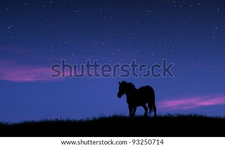 horse silhouette on the top of a hill against twilight sky with stars