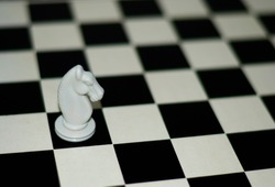 horse standing on the chessboard