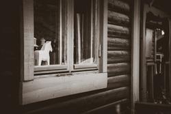 Horse toy through the window B&W