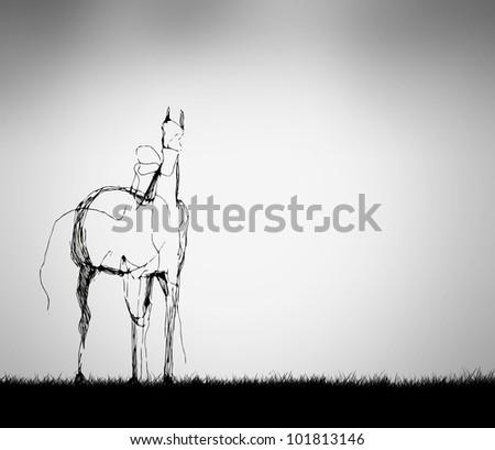 horse wallpaper - stock photo