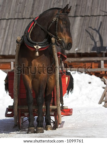 Horse with the sledge