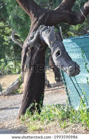 Horse wood decoration on the farm