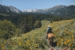 Horseback riding in the Grand Teton Mountain Range