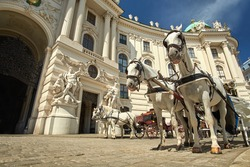 Horses and carriage tradition, Vienna, Austria.