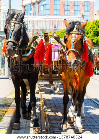 horses and couches on the street #1378740524