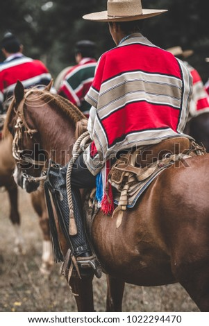 Horses and horse men in a traditional chilean event. Huaso Chileno