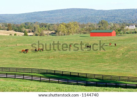 Horses and red barn