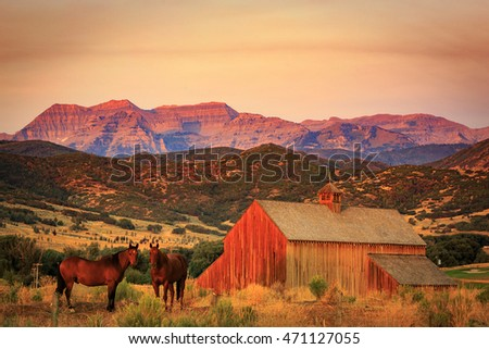 Horses by a wooden barn in Heber Valley, Utah, USA.