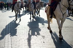 Horses during the military parade with shadows on the ground