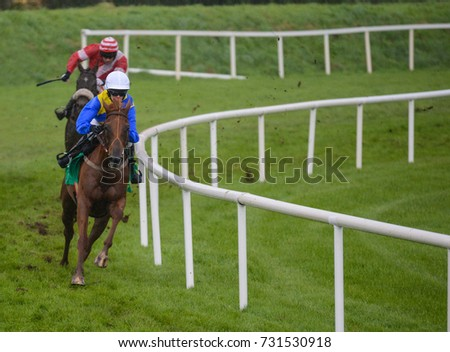 Horses galloping on the racetrack  #731530918