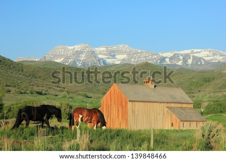 Horses graze beside a scenic wooden barn in rural Utah, USA.