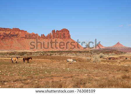 horses in a southwest pasture with red rock cliffs and towers in the background
