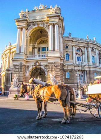Horses in front of the Odessa Opera Theater. In Odessa, Ukraine #1094172263