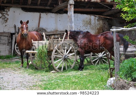 horses next to a wooden cart - stock photo
